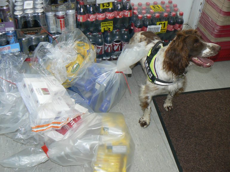 Can Sniffer Dogs Sniff Alcohol